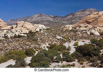 White Rocks at Red Rock Canyon