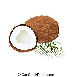 Ripe juicy coconut with leaf isolated on white. Whole and...