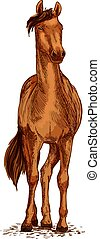 Horse brown mustang vector sketch symbol