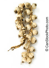 garlic bulbs - Bunch of garlic bulbs on white background