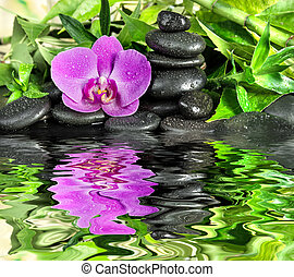 Spa concept with zen stones, orchid flower and bamboo...