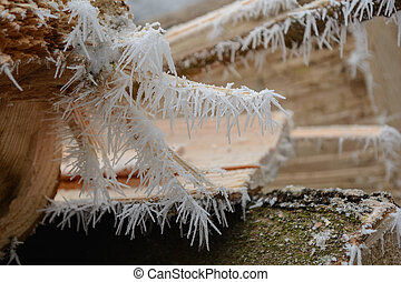 Ice crystals on the tree trunk - hoarfrost - Hoarfrost and...