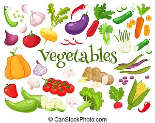Set of fresh vegetables for your design. Raw vegetables with...