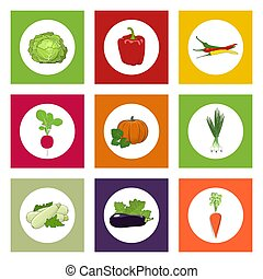 Round Icons Vegetables on Color Background - White Icons...