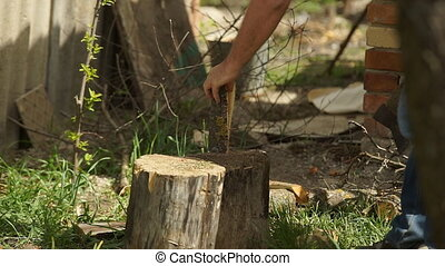 Ax Firewood Cutting - The logger cuts wood with an ax.