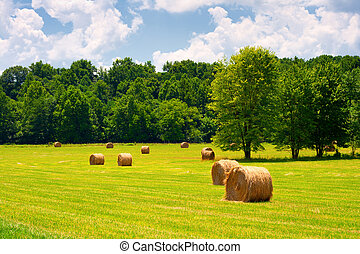 Hay Bales - Hay bales in a green field with cloudy skies