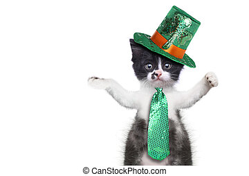 Funny Kitten Celebrating the American Holiday Saint Patricks...