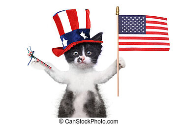 Funny Kitten Celebrating the American Holiday 4th of July -...