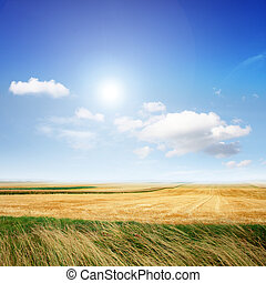 Landscape in the summer - Beautiful scenery in the summer on...