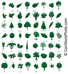 Collection of icons of trees and leaves A vector...