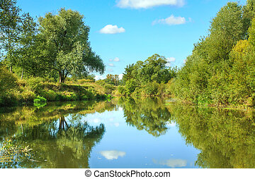 summer rural landscape with river and forest.