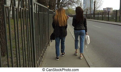 two beautiful girls go along the road
