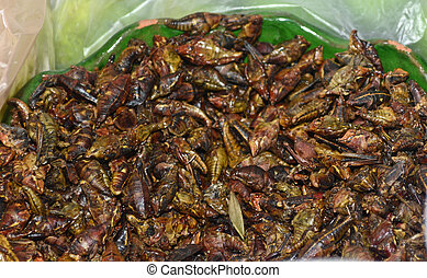 Fried crickets, mexican cuisine