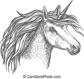 Mythic unicorn horse vector sketch - Unicorn head sketch....