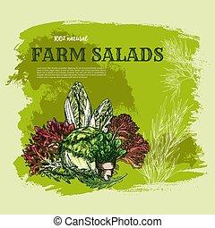 Salad leaf and green vegetable sketch poster