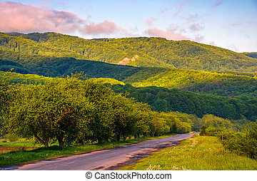 Countryside road in mountains at sunrise - Empty asphalt...