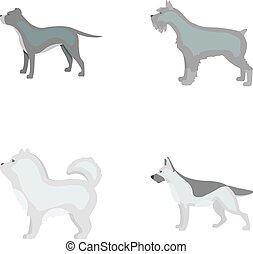Pit bull, german shepherd, chow chow, schnauzer. Dog breeds...