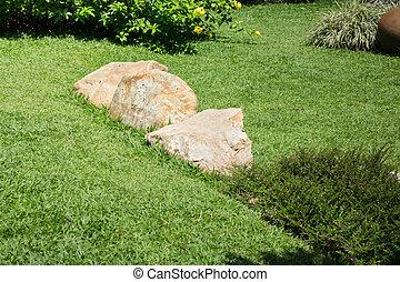Fresh Summer Green Grass Garden, stock photo