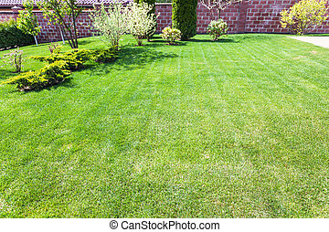 well-groomed lawn with decorative bushes on backyard of...