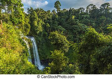 Beautiful waterfall in Laos