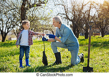 Two generations spending time in backyard together - Looking...