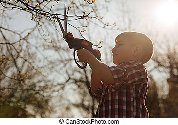 Little boy cutting branches in sunlight