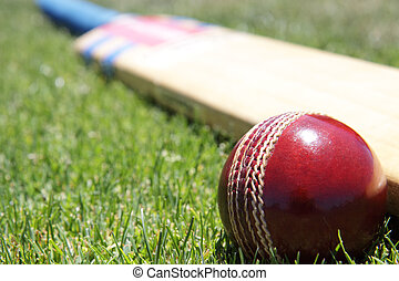 Cricket equipment. - New cricket ball and bat on green...