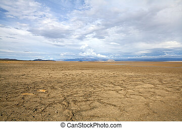 Zzyzx Dry Lake While Wet. - Zzyzx dry lake with thunderstorm...