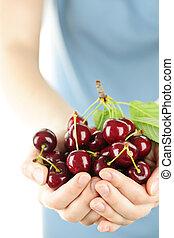 Hands holding bunch of cherries