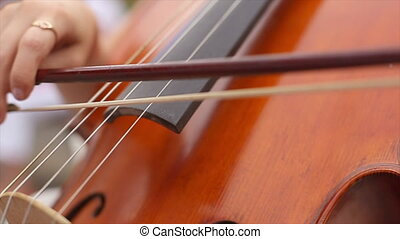 Lady's Hand Playing the Cello - Lady's hand playing the...