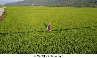 Aerial View Woman Carries Girl in Arms among Rice Fields