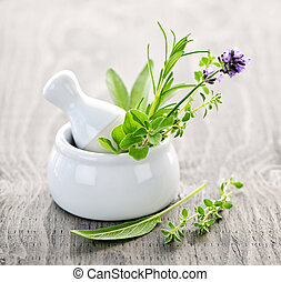 Healing herbs in mortar and pestle - Healing herbs in white...