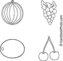 Watermelon, grapes, cherry, kiwi.Fruits set collection icons in outline style vector symbol stock illustration web.