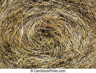 Hay Bale - A Bale of Hay and Straw.