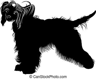 Chinese Crested dog. dogs. Chinese crested breed,black and white vector picture isolated on white background