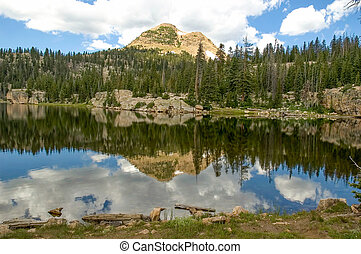 Island Lake Reflection - Reflection of the mountains in...