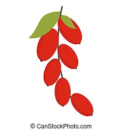 Red berries of cornel or dogwood icon isolated - Red berries...