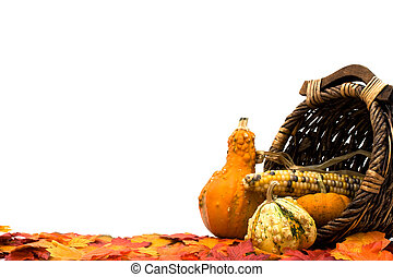 Fall Scene - Fall leaves with a pumpkins, gourds and a...