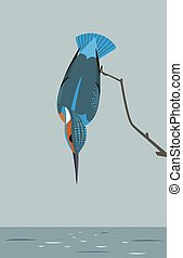 Kingfisher is looking for prey in the river - The image of a...