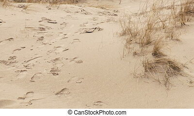 Closeup of footprints in the sand