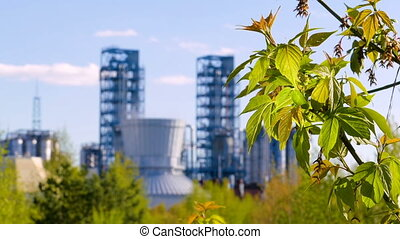 branch with green leaves on the background oil refinery....