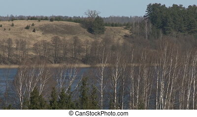 Trees without leaves growing near the lake. Early spring...