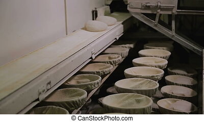 Bakery factory conveyor with bread - Bakery industry. Loaf...