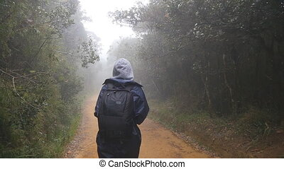 Hiking woman with backpack walking in tropical wet forest....