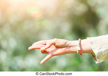 Hand in yoga position in nature