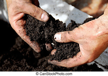 Black soil - black soil in man hand closeup outdoor