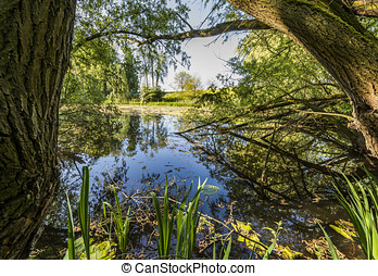 Lake Hondegat in Asperen - Small lake 'Hondegat' of Dirk...