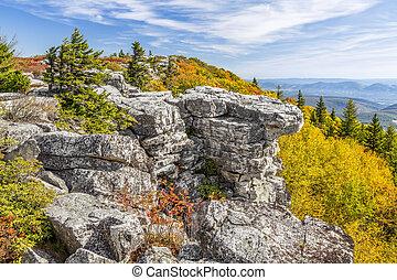 Fall Color at Bear Rocks