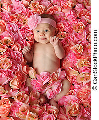 Baby in a bed of roses - Adorable smiling baby girl lying in...