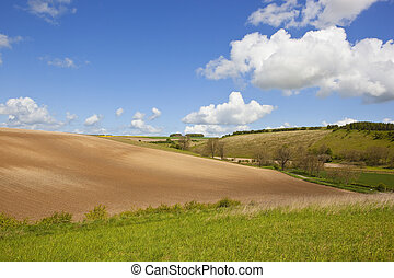 yorkshire wolds landscape - a yorkshire wolds landscape with...